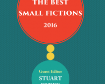 Best Small Fictions 2016